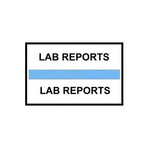 LAB REPORTS BLUE INDEX TABS 100/PK